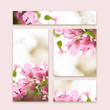 Set of floral business cards design