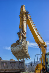 excavator arm and dumper truck