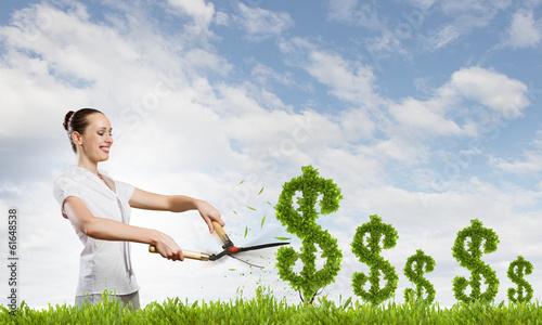 Income concept
