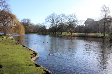 London Park, Lake