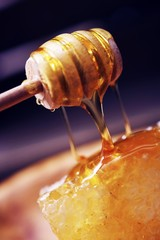 Raw Honey and Dipper