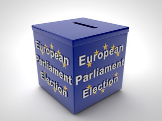 European Parliament Election 2014 European Flag