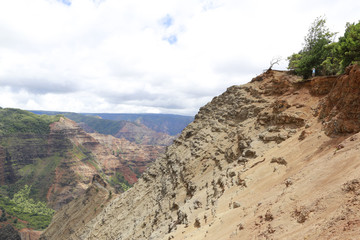 Man is overlooking Waimea Canyon, Hawaiian islands
