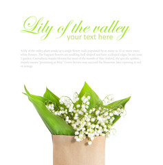 lily of the valley in a paper bag