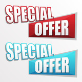 special offer in two colors labels, flat design