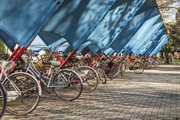 Parcheggio di biciclette a Padova