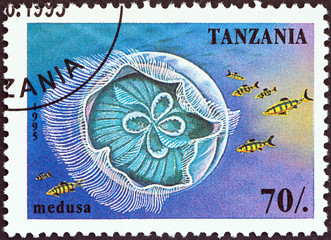 Medusa (Tanzania 1995)
