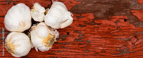 Fresh whole cloves of farm fresh garlic
