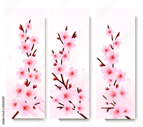 Three spring banners with blossoming sakura branches. Vector ill