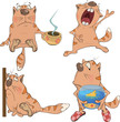 Set of cartoon cats