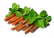 Sticks of cinnamon with mint