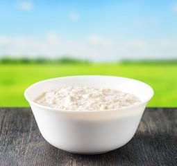 Bowl of oat porridge on nature background