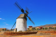 windmill in Antigua, Fuerteventura, Canary Islands, Spain