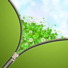 Opened metallic zipper over clover background