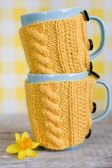 Two blue cups inin yellow sweater and narcissus