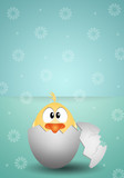 Chick in egg for Easter background
