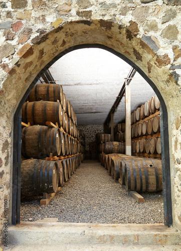 Wine barrels - 61691160