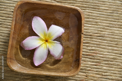 White frangipani flower in wooden bowl on mat