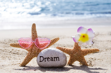 Two Starfishes with rock on the beach