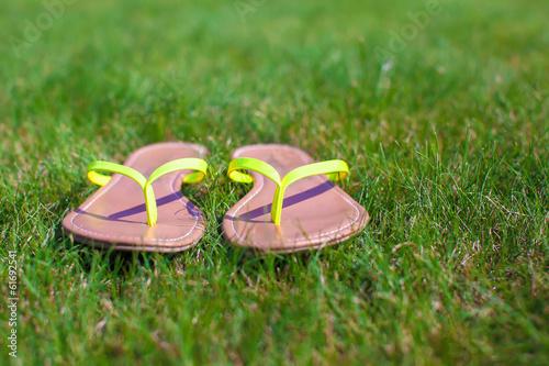 Closeup of bright flip flops on green grass