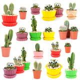 Collage of funny cacti, isolated on white