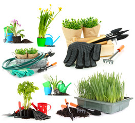 Collage of gardening isolated on white