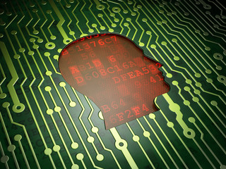 Finance concept: Head on circuit board background