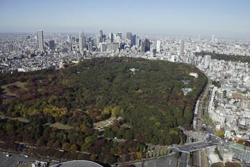 Aerial view of Meiji-jingu areas