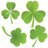 Collection of clovers, vector