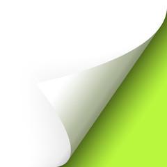 Papier - Ecke unten grün