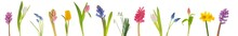 "Постер, картина, фотообои ""Spring flowers"""