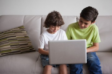 Young boys using laptop in the living room