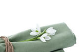 Fresh snowdrops on napkin