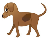 A brown cute dog