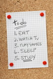 A To Do list for students on a cork notice board