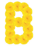Letter B made from dandelions