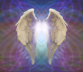 Angel Wings on Matrix background