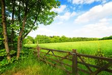Płot w zielonym polu pod błękitne niebo