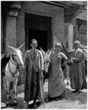 Traditional Arabians & their Donkeys