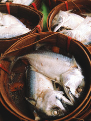 Mackerel fish in bamboo basket