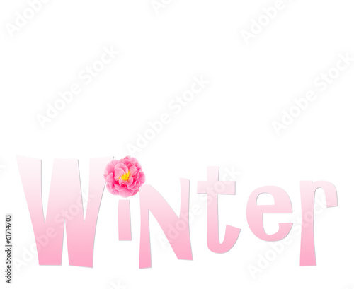 Winter text with camellia flower