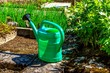 Green watering can and vegetables in the garden.