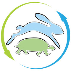 Tortoise Hare Race Cycle