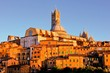 View over the medieval city of Siena, Italy at sunset