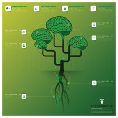 Brain Tree And Root Infographic Design Template