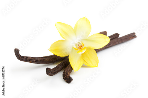 Plexiglas Aromatische Vanilla pods and orchid flower isolated on white background