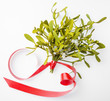 mistletoe plant isolated on a white background