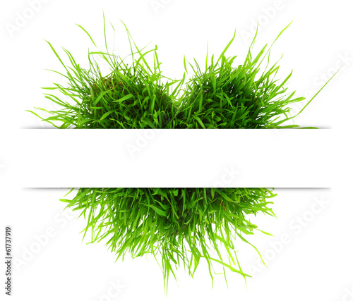Eco concept with heart made of grass and copy-space