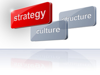 culture structure strategy 3
