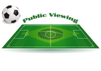 Public Viewing 2014 - Flyer